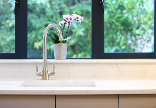 Sink & Flowers